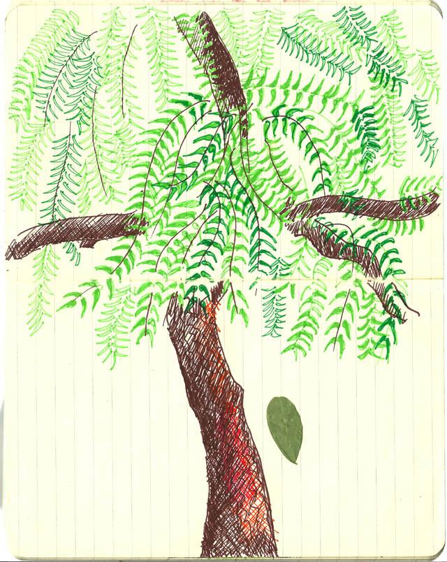 Under The Neem Tree Tina Sani Harmonium